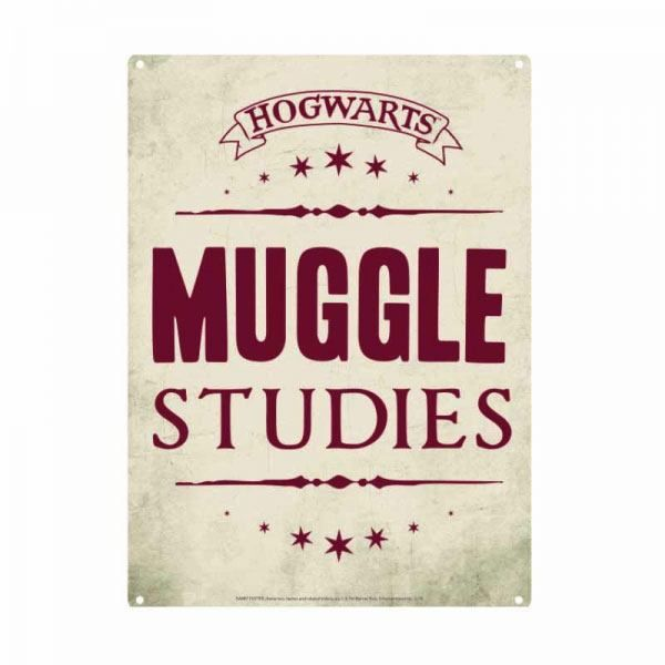 Harry Potter Blechschild Muggle Studies 21 x 15 cm